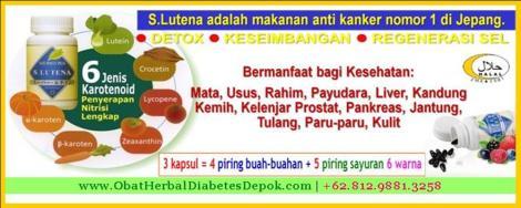 obat herbal diabetes depok